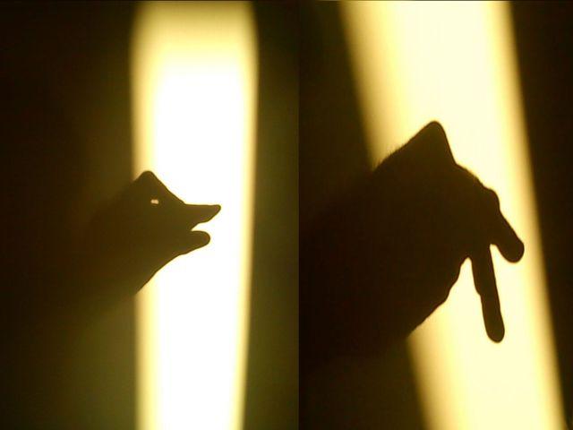 ele ost shadow