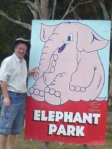 AnElephant and an Oz Elephant