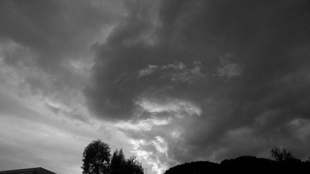 golden haze by anelephantcant