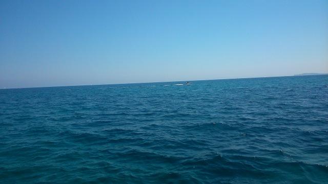 La Med by anelephantcant