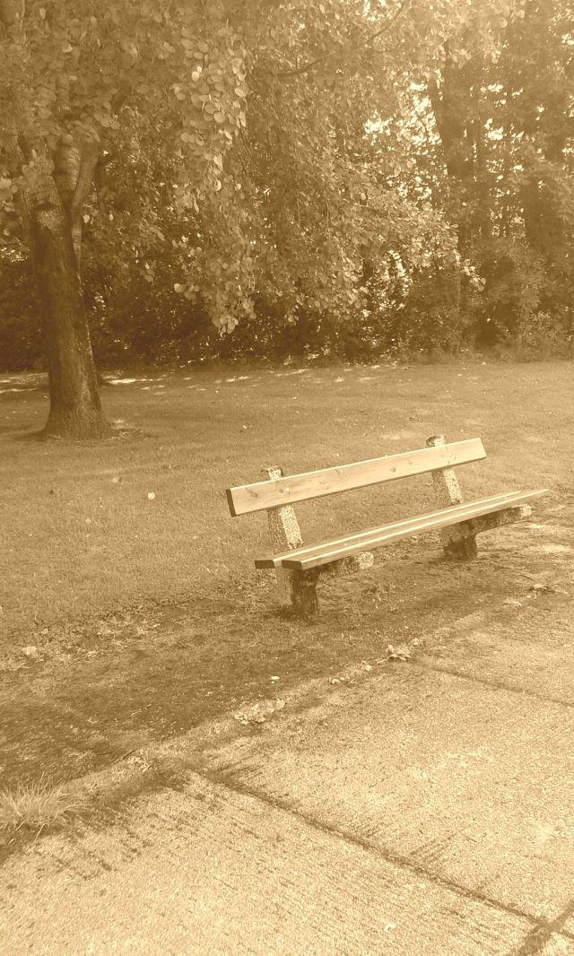 empty days by anelephantcant